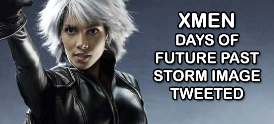 Halle Berry, Bryan Singer, X-Men: Days Of Future, Superhero, Sequel, X-Men, Marvel Comics, Marvel, Entertainment, Comic Book, Storm, @Hwoodgonegeek, HGG, Hollywood Gone Geek, Mutants, Entertainment, Twitter, Social Media