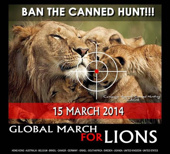 Global March for Lions March 15 2014
