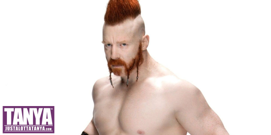 Sheamus-2017-WWE-Signing-Michigan-JLT