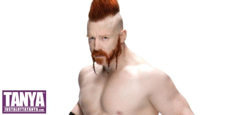 Sheamus-2017-WWE-Signing-Michigan-JLT