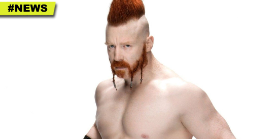 Sheamus-2017-WWE-Signing-Michigan-HGG